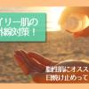 脂性肌(オイリー肌)の紫外線対策!オススメしたい日焼け止めをご紹介!